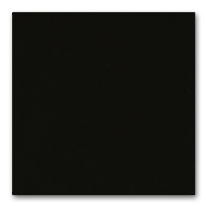 12 deep black powder-coated (smooth)