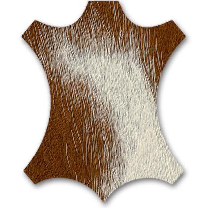 brown/white