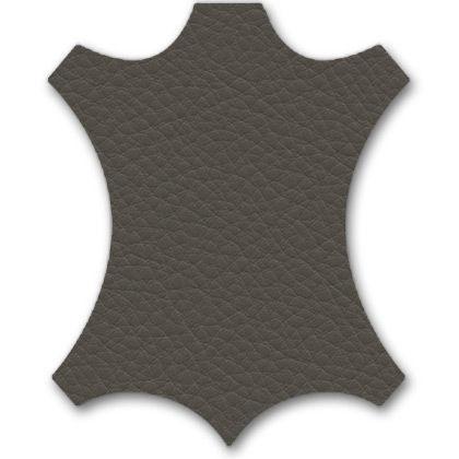 61 gris umbra