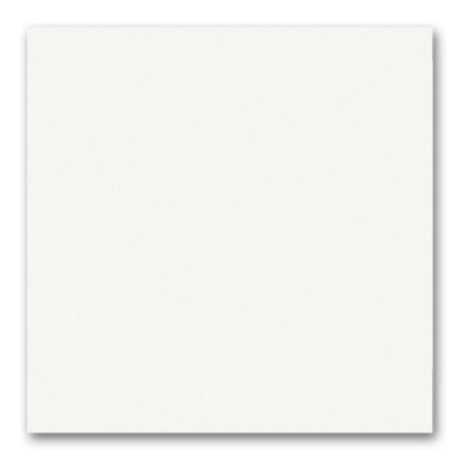 04 blanco revestimiento en polvo (texturizado)