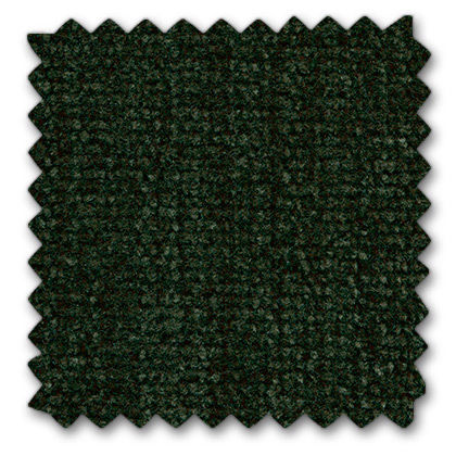 11 vert foncé